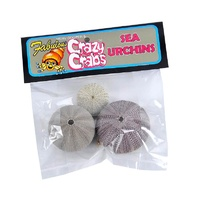 Crazy Crab Sea Urchin Bag for Pet Hermit Crabs | Crazy Crabs Calcium | Online Hermit Crabs Australia