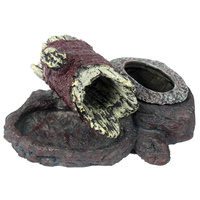 Reptile Resin Combo Food and Water Bowl | Natural Rock